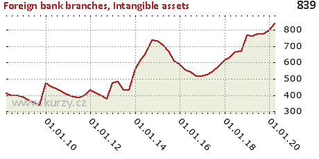 Intangible assets,Foreign bank branches