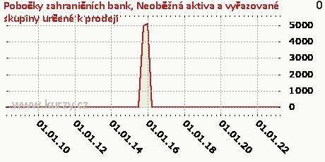 Neoběžná aktiva a vyřazované skupiny určené k prodeji,Pobočky zahraničních bank
