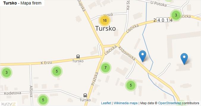 Tursko - mapa rozložení firem v obci.
