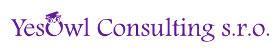 Yesowl Consulting logo