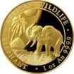 Zlatá investiční mince Slon africký 1 Oz