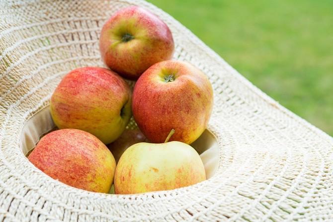 Nejlepší jablka jsou tuzemská