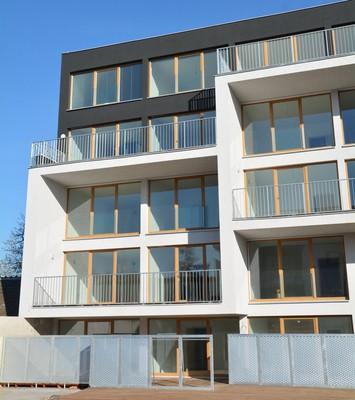 Také pro brněnský realitní trh je charakteristická vysoká poptávka po bydlení v novostavbách