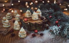 Vánoční recepty: boduje klasika v moderním kabátě