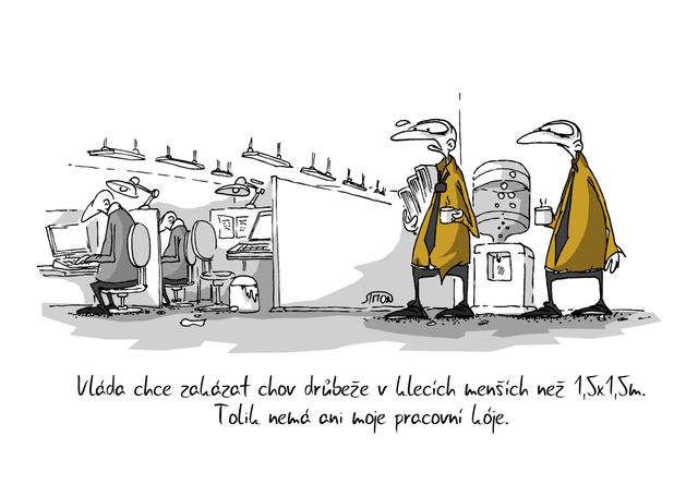 Kreslený vtip: Vláda chce zakázat chov drůbeže v klecích menších než 1,5 x 1,5 m. Tolik nemá ani moje pracovní kóje. Autor: Marek Simon