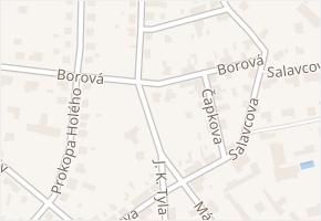 Borová v obci Pardubice - mapa ulice
