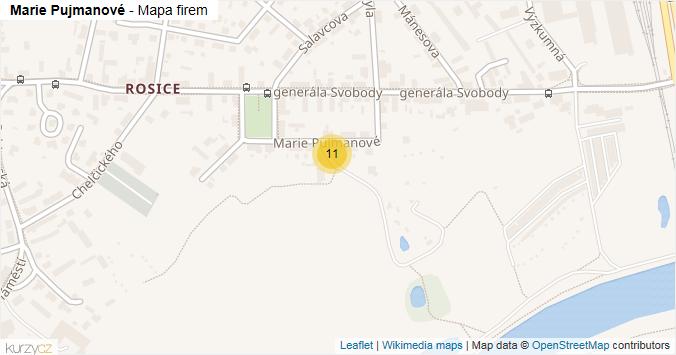 Mapa Marie Pujmanové - Firmy v ulici.