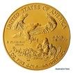 Zlatá investiční mince 1 Oz 50 USD American Eagle stand
