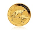 Zlatá investiční mince Nugget Kangaroo Klokan 31,1 g (1 Oz)