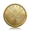 Zlatá investiční mince Maple Leaf 1,55 g (1/20 Oz)