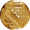 Česká jména - Radovan - velká zlatá medaile 1 Oz