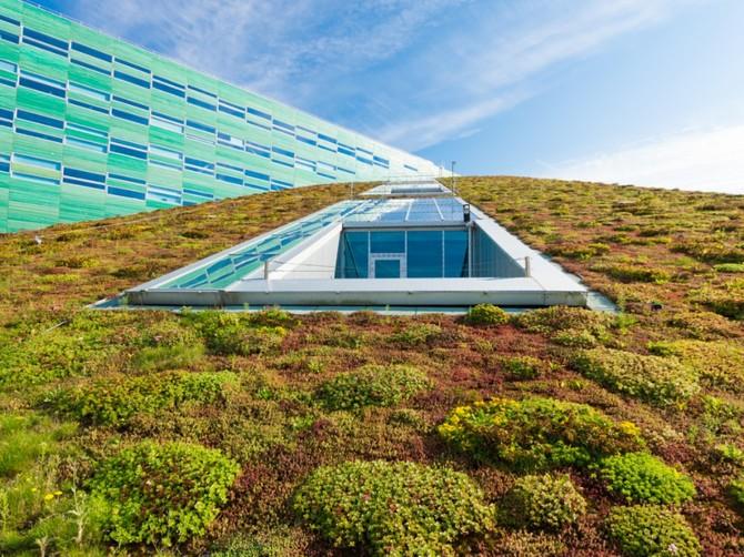 MŽP chystá na výstavbu zelených střech miliardy korun