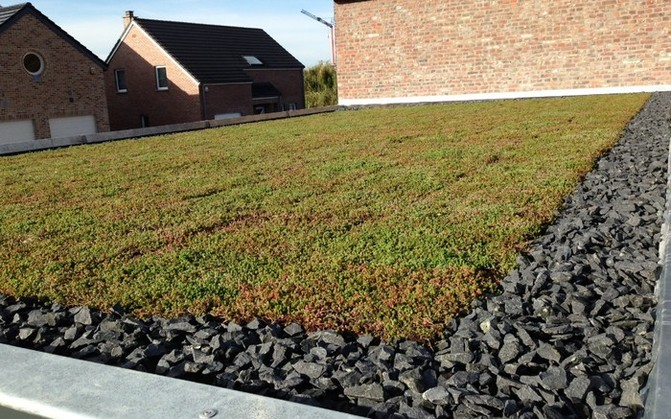 Zelená střecha je ekologická i ekonomická