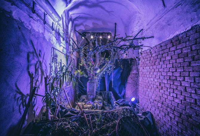 Festival umění, vědy a technologií v Brně