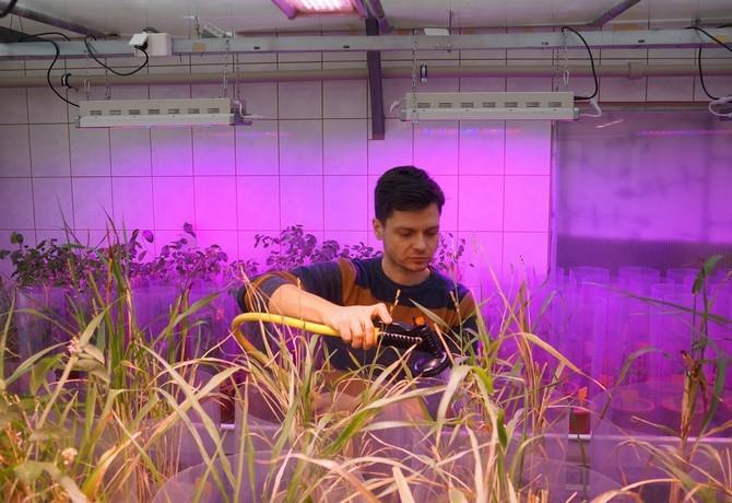 Ekologické pěstování s minimem hnojiv