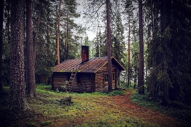 Dřevěná chata schovaná v lese.