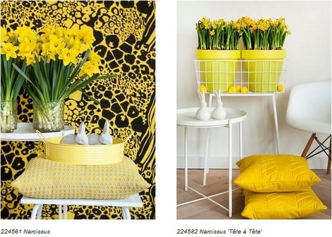 Prosvětlete svůj domov květinami v zářivých jarních barvách