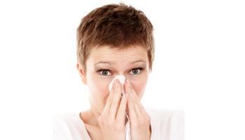Největší potíže způsobuje prach alergikům