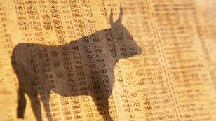S&P 500: Jak uplynulých sedm let růstu změnilo hlavní americký index?