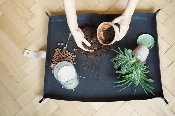 Rostlinu zbytečně moc neoklepávejte, jen lehce