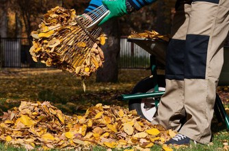 Padající listí neodmyslitelně patří k podzimu