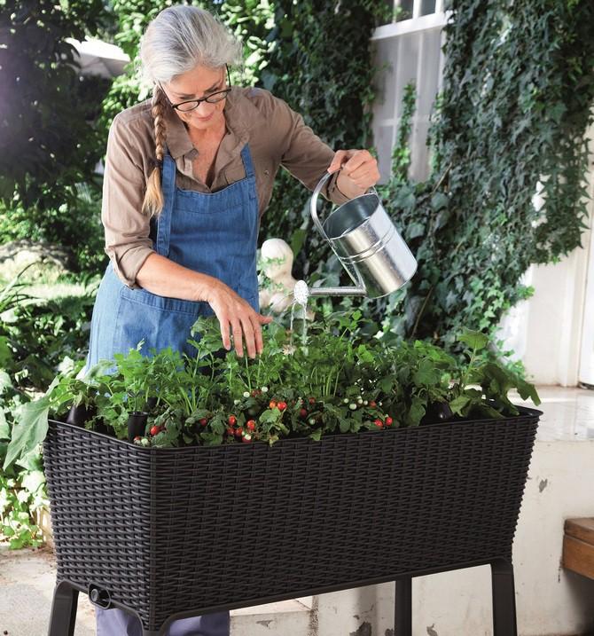 Když se rozhodnete pro vlastní zahrádku, je důležité vybrat správné nádoby na pěstování, substráty a přísady