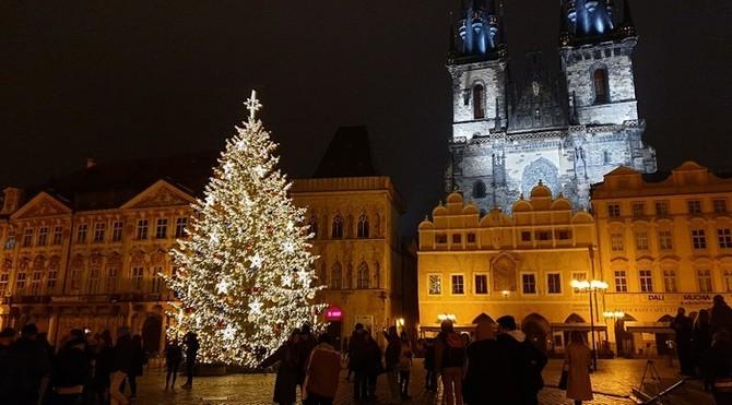 Letos je v Praze jednatřicet vánočních stromů
