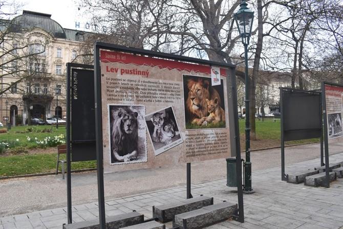 Výstava ve Smetanových sadech (fotografie: A. Jarošová)