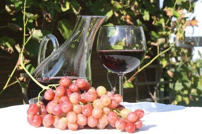 Dobré víno je z jižní Moravy
