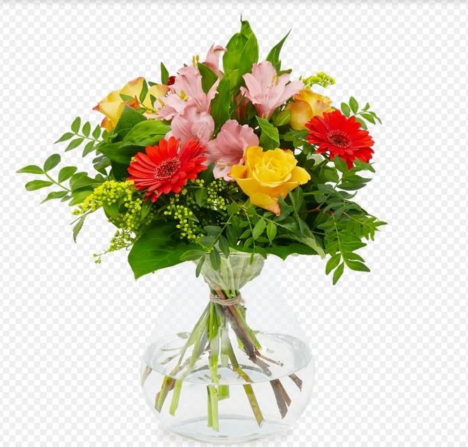 Čistá váza je naprostý základ
