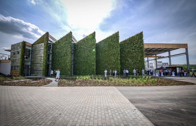 Místem pro zeleň jsou i fasády a střechy domů