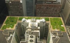 Názor developera: zelené střechy oteplování města nezastaví, pomůže jen dostatek nezastavěných ploch