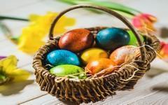 Velikonoce jsou ve znamení vajec. Co všechno o vejcích víme?