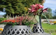 Podzimní květinové aranžmá: vřesy, chryzantémy, ale i šípek a jeřabiny
